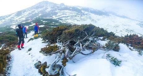 一面に広がる山肌と登山客