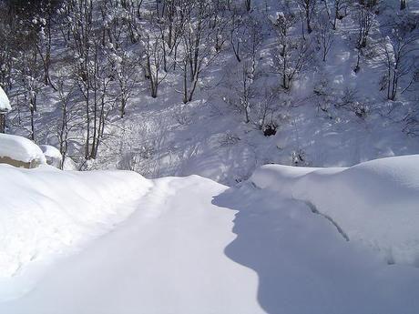 一面真っ白な雪山