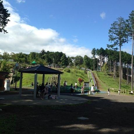 富士山樹空の森で遊ぶ子供達