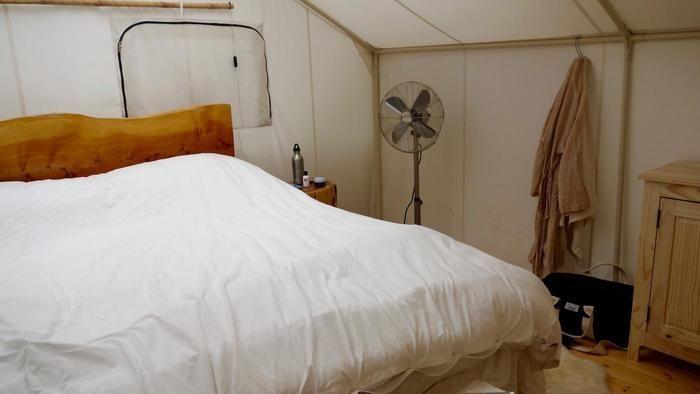 ネイティブ・オーガニックで統一されたテント内