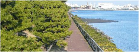 京浜島つばさ公園バーベキューエリア
