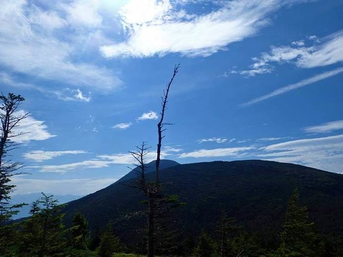 双子山の山頂までの登りのコース