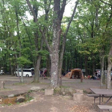北軽井沢スウィートグラスのキャンプサイトの様子