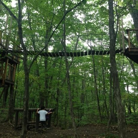 北軽井沢スウィートグラスのアスレチックの吊り橋