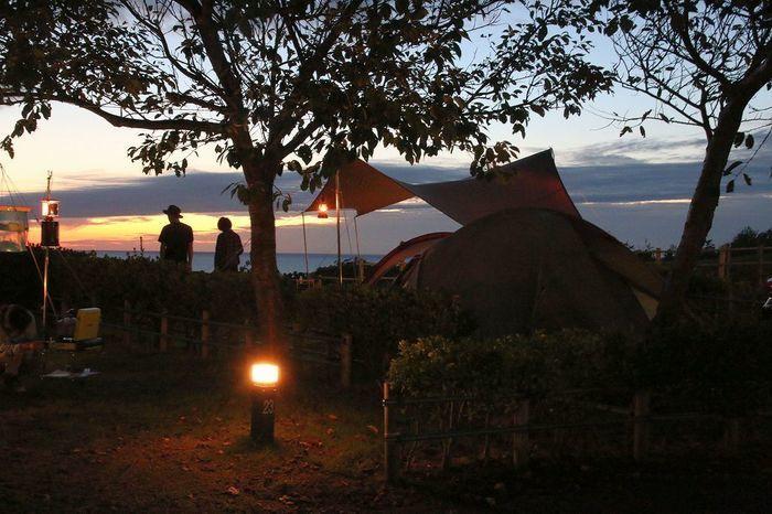 和島オートキャンプ KIZUNAの森