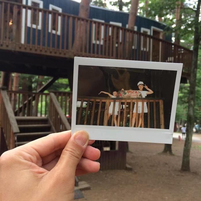ツリーハウスで遊ぶ子供たちの写真をツリーハウスをバックにもち撮った写真