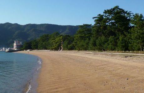 桂浜キャンプ場 海と砂浜