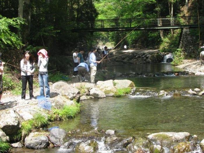 大丹波川国際虹ます釣り場