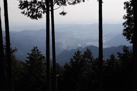 山頂付近から街を撮影した写真