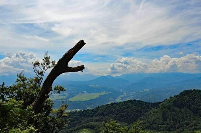 山伏山頂上から見える景色
