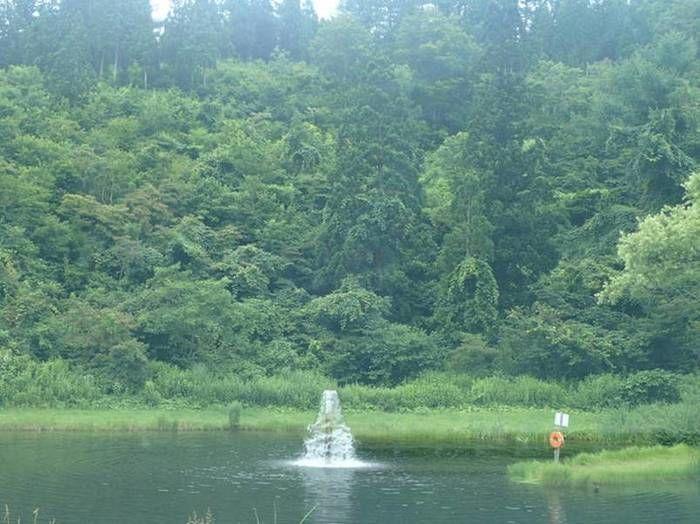 無印良品津南キャンプ場のフライルアー専用の池