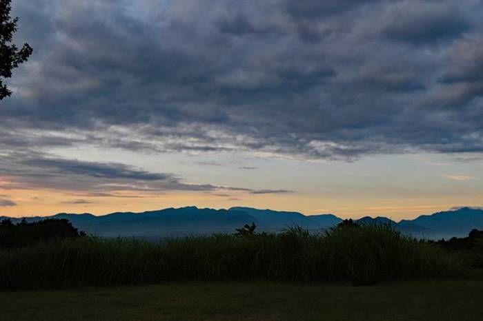 テントから見える朝の景色