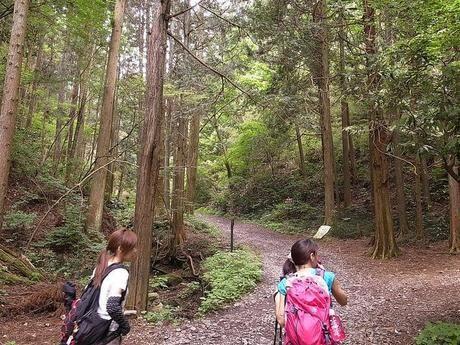 山道を歩いている2人の女性