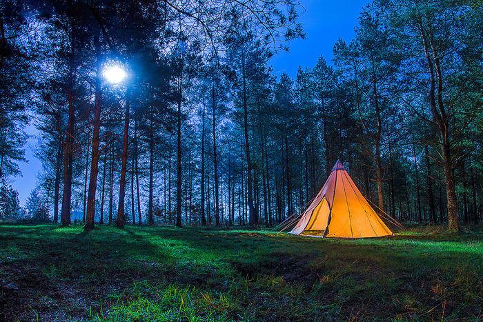 森の中で明かりを灯すノルディスクのテント