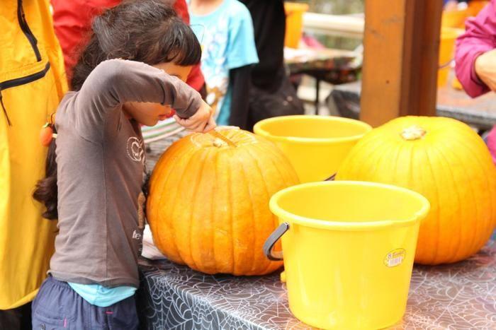 ナイフでかぼちゃを掘る少女