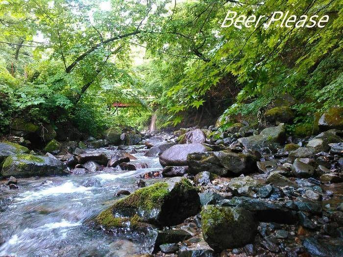 道志の森キャンプ場の川の様子