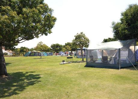 竜洋海洋公園オートキャンプ場のキャンプの様子