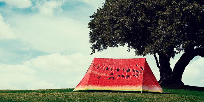 草原に建てられたスイカ模様のテント