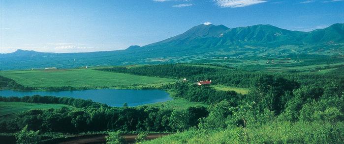 緑が広がるカンパーニャ嬬恋キャンプ場