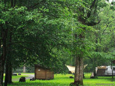 支笏湖美笛キャンプ場のキャンプサイト