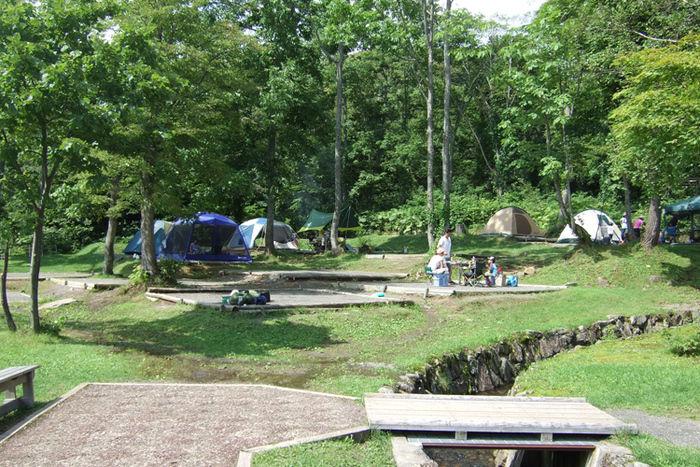 道民の森キャンプ場のキャンプサイト