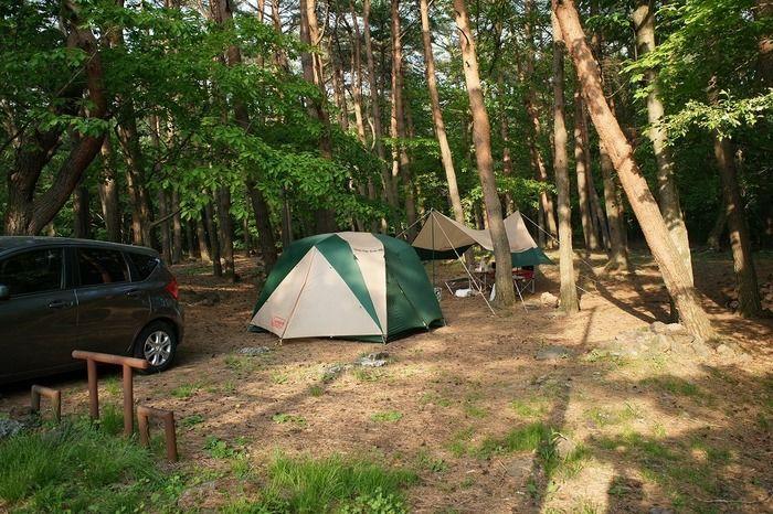 フリーサイトのテントと車