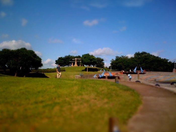 千葉ポートバークの芝生広場