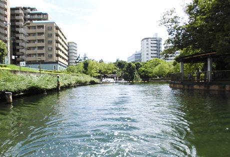 横十間川親水公園 水辺の風景
