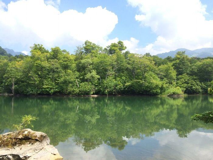 鏡池に移る木々の緑