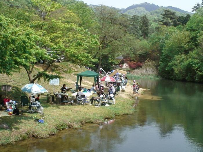 川遊びが出来る山城町森林公園