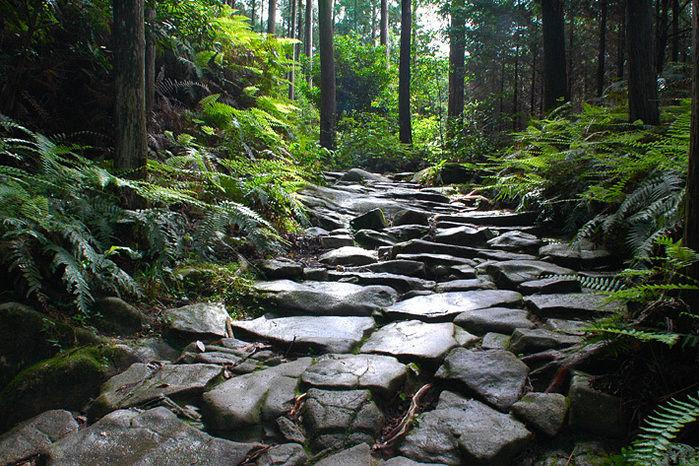 熊野古道の石畳