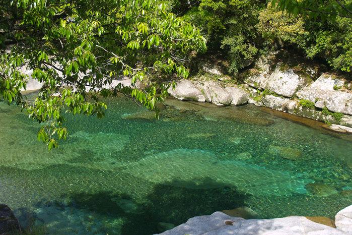 透明度の高い銚子川