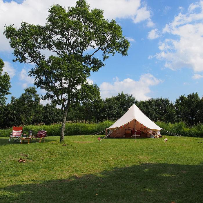 芝生の緑と青空に挟まれて引き立つアイボリーカラーのテント
