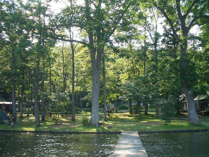 湖楽園キャンプ場の林間サイト
