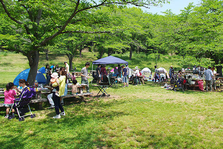 国営武蔵丘陵森林公園でキャンプする人々