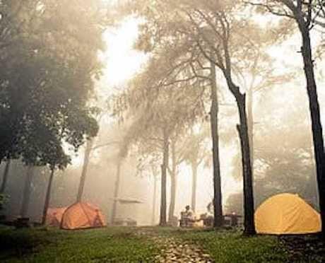 洞川キャンプ場のテントサイト
