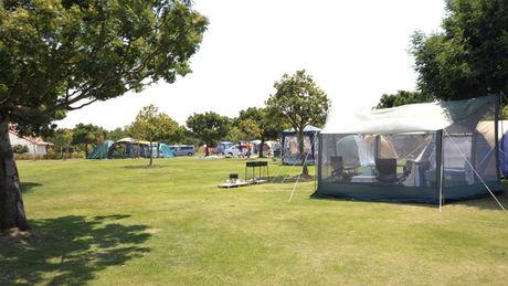 竜洋海洋公園オートキャンプ場の広大なフリーサイト