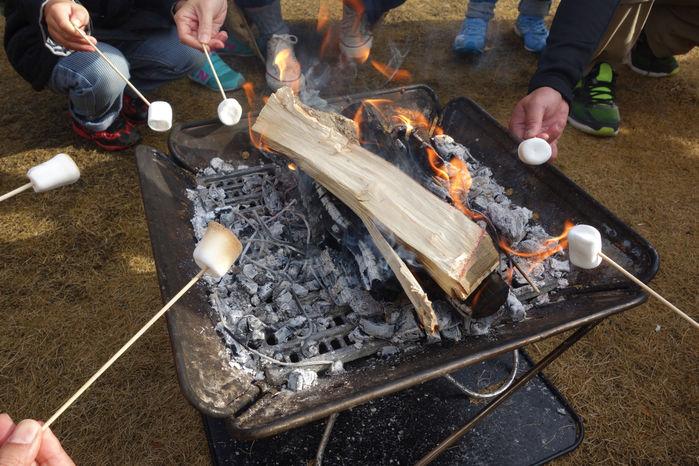 焚き火でマシュマロを焼く様子