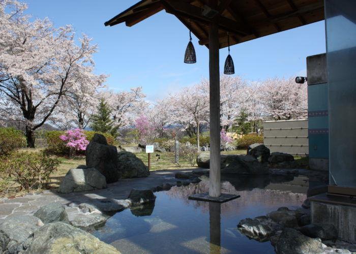 藤野やまなみ温泉の温泉