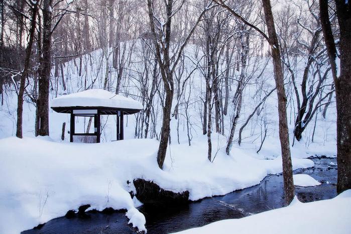 冬のライジングフィールド軽井沢の冬の景観