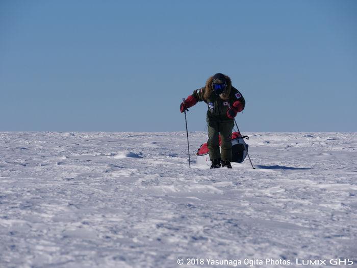 南極の厳しい環境を歩く荻田泰永さん
