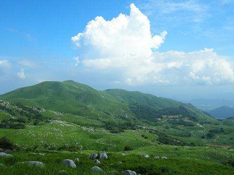 平尾台自然の郷の景色
