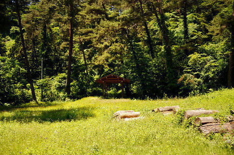 堀越キャンプ場のキャンプサイトイメージ