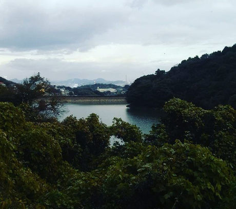 菖蒲谷キャンプ場から見える景色