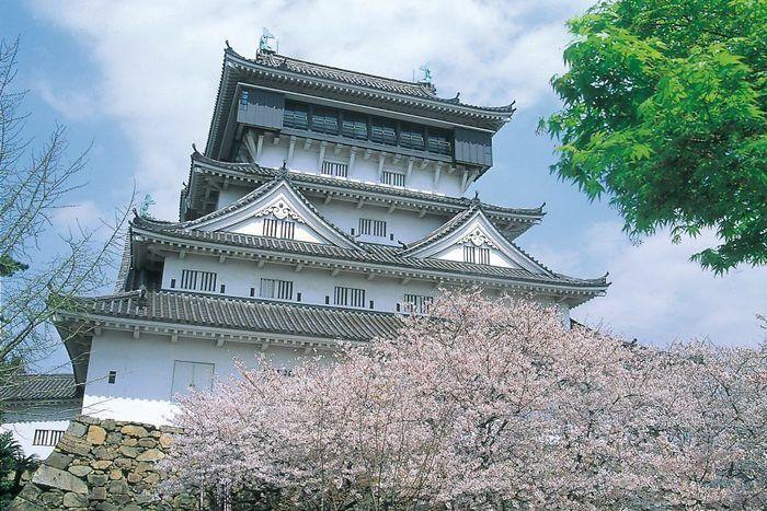 花が咲いた桜の木とそこから見える小倉城