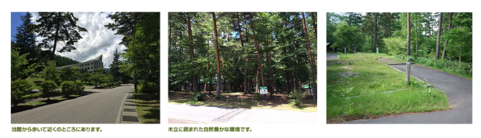 須砂渡キャンプ場の様々なキャンプサイト