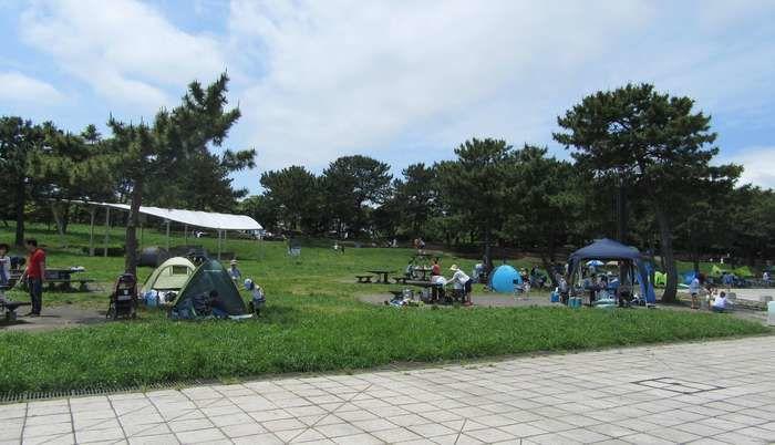 海の公園でのキャンプの様子