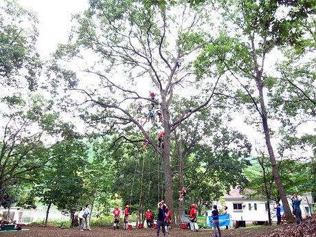 城里町総合野外活動センターふれあいの里でアクティビティを楽しむ子供達