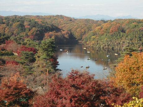 宮沢湖温泉 喜楽里別邸の露天風呂から見える宮沢湖の景色