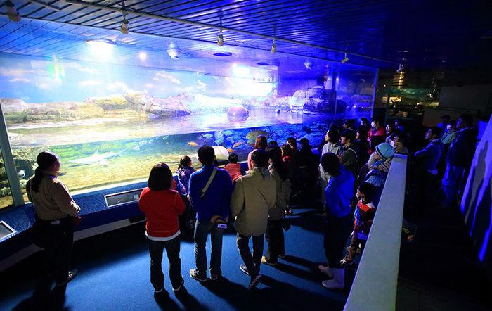 鴨川シーワールドで水槽を見ている人々